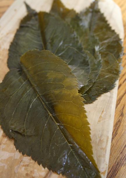 feuilles de cérisier en saumure