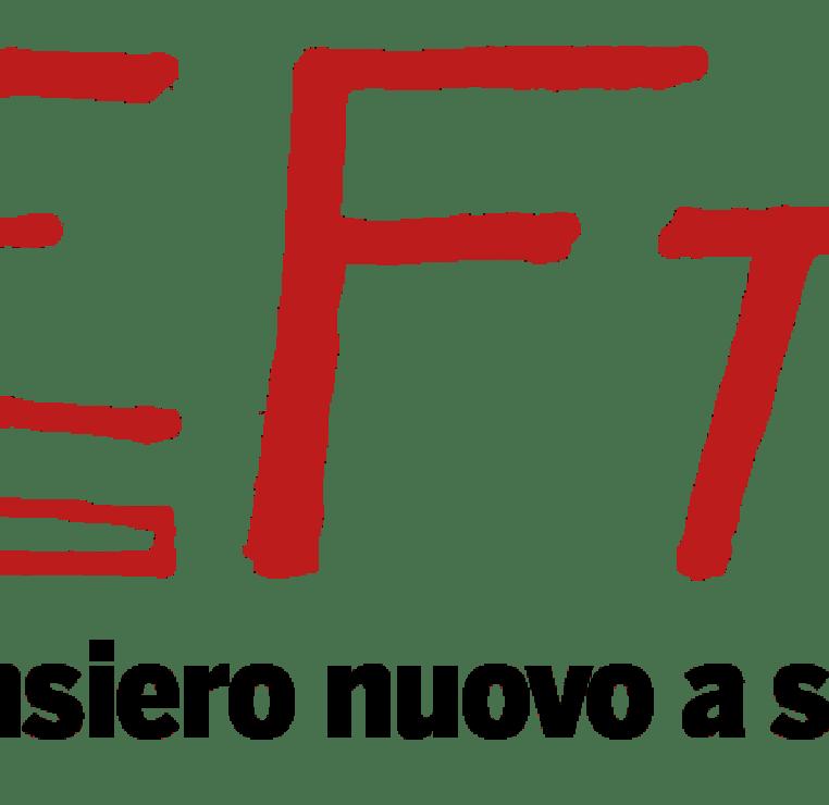 donne costituente