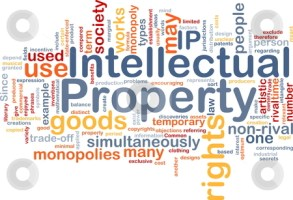 What is meant by Intellectual Property ?