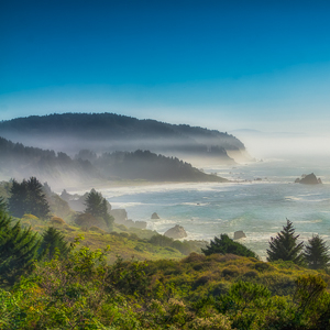 Rugged Beauty of the Pacific Northwest Coast