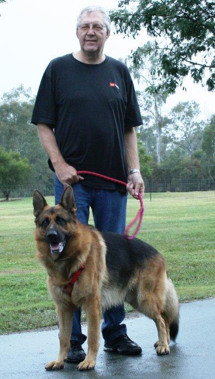 german-shepherd-male-Viking-with-his-own-Ake