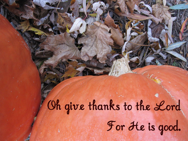 give thanks pumpkin