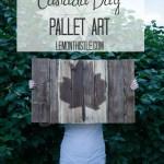 DIY Canada Day Pallet Art- and a money saving secret