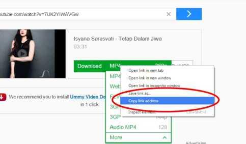 download youtube dengan idm