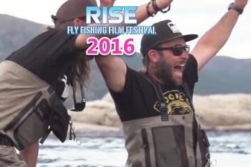 rise-contest
