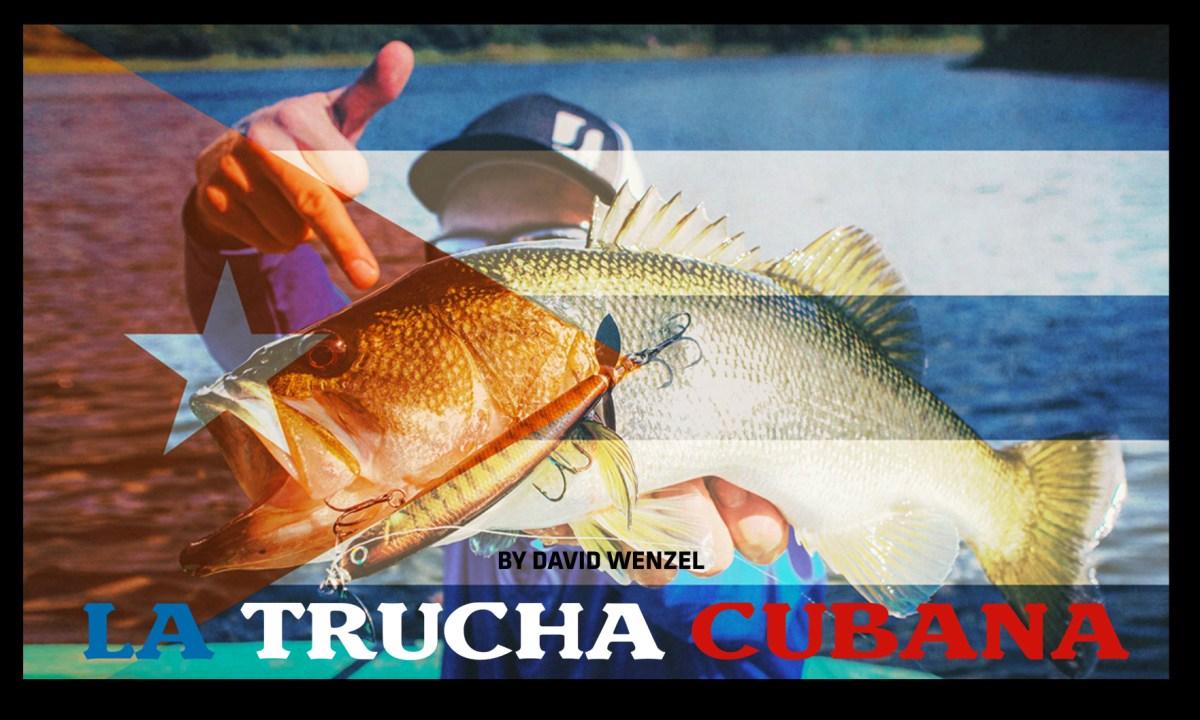 tucha-cubana