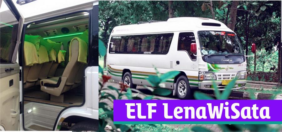 ELF-LEwis