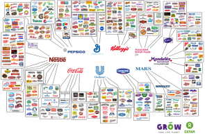 these-10-companies-control-a significant portion -of what we buy via: http://www.businessinsider.com/10-companies-control-the-food-industry-2016-9/