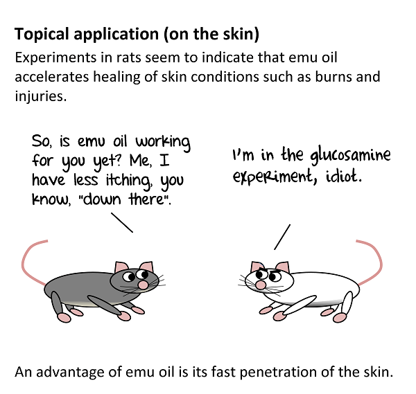 In rats, it helped for skin conditions such as burns, injuries, rash