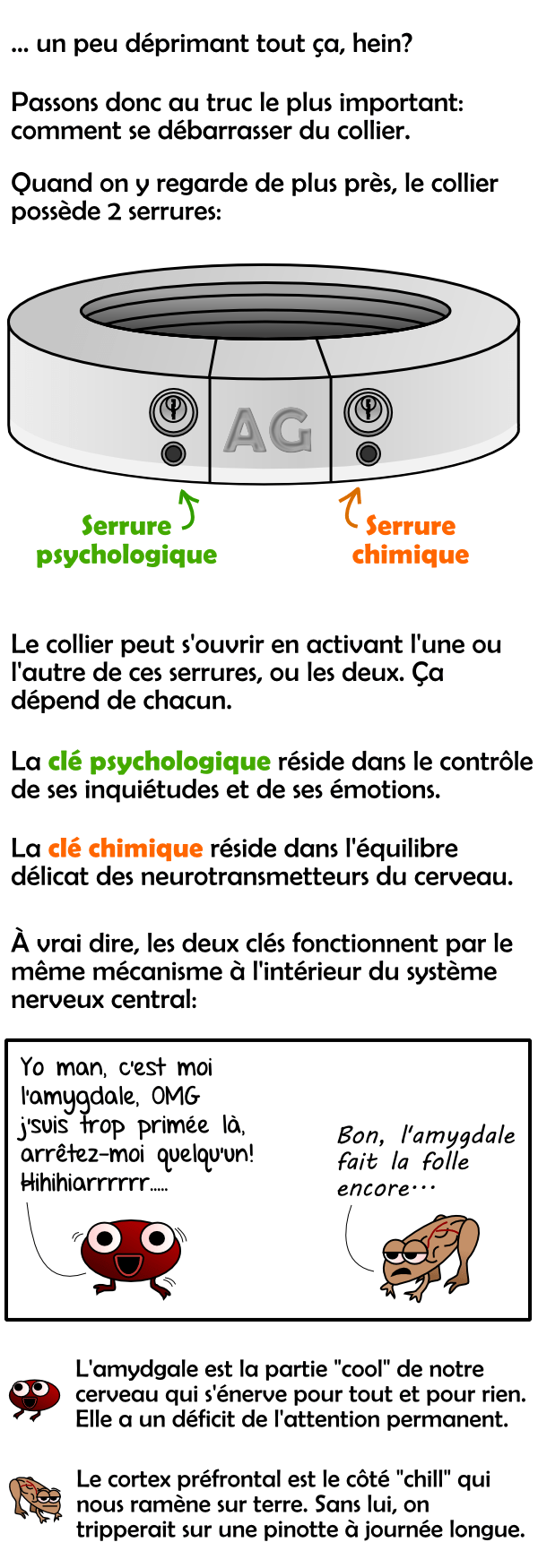 Les serrures psychologique et chimique du collier de métal et intro sur l'amygdale et le cortex préfrontal
