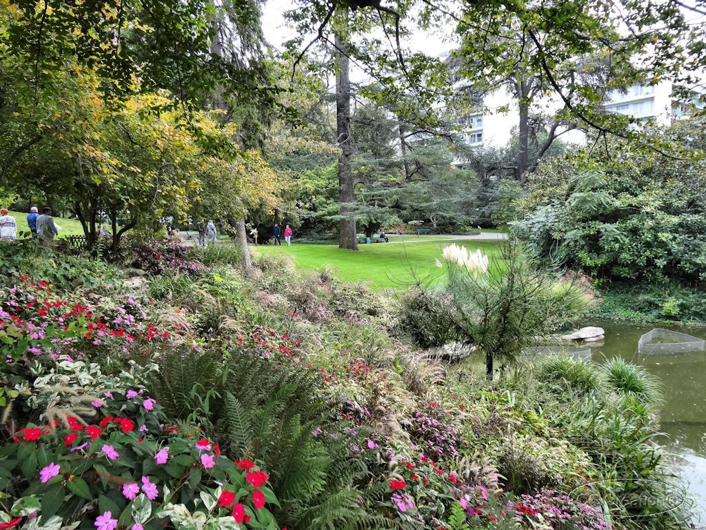 Visite du jardin des plantes angers 49 1 2 les for Jardin les plantes