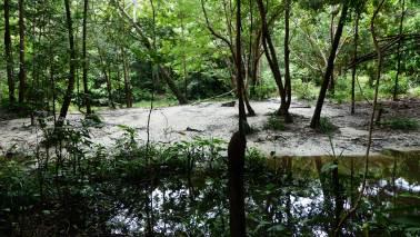 rio pepital cheio (6)