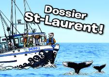 Dossier_StLaurent_Petit
