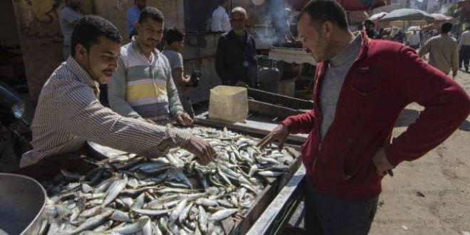 Hausse des prix: les poissonniers de Chefchaouen intimidés