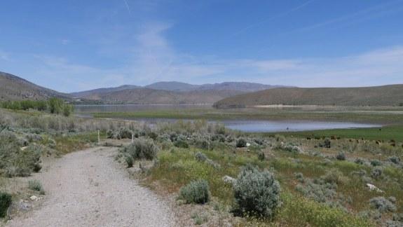 paysage road trip usa