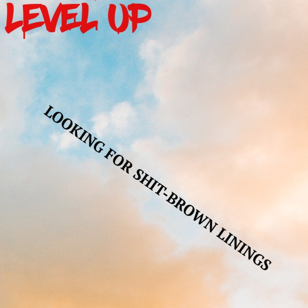 Looking for Shit-brown Linings