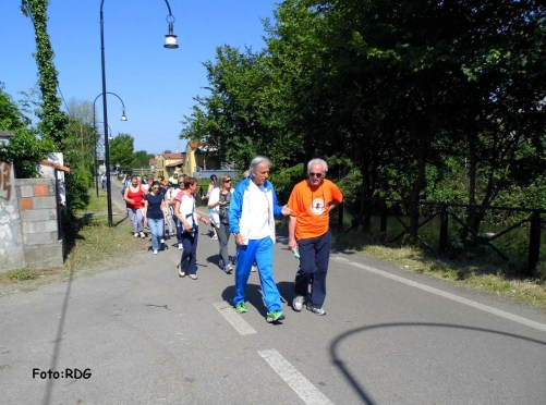 Camminata sul Naviglio della Martesana (a Vimodrone)