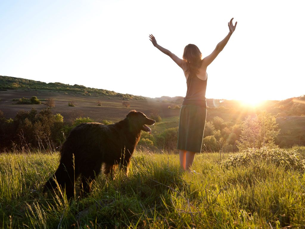 Tratamiento de Gratitud, de Louise Hay
