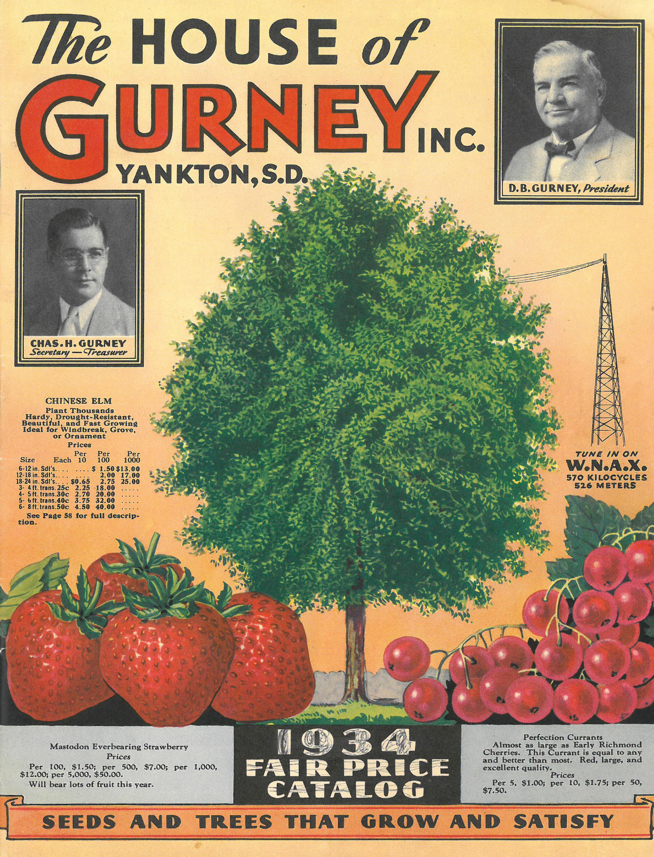 Fullsize Of Gurneys Seed And Nursery Company
