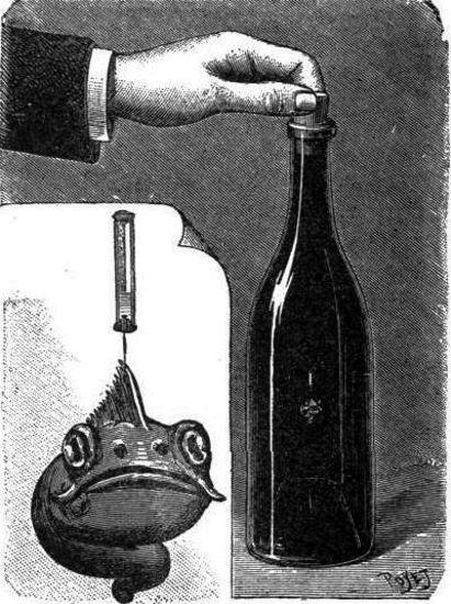 Un microbio en la botella