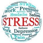 stres-egitimi
