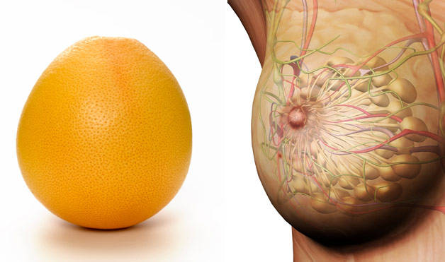 Grapefruit-BreastsFoods-That-Look-Like-Body-Parts