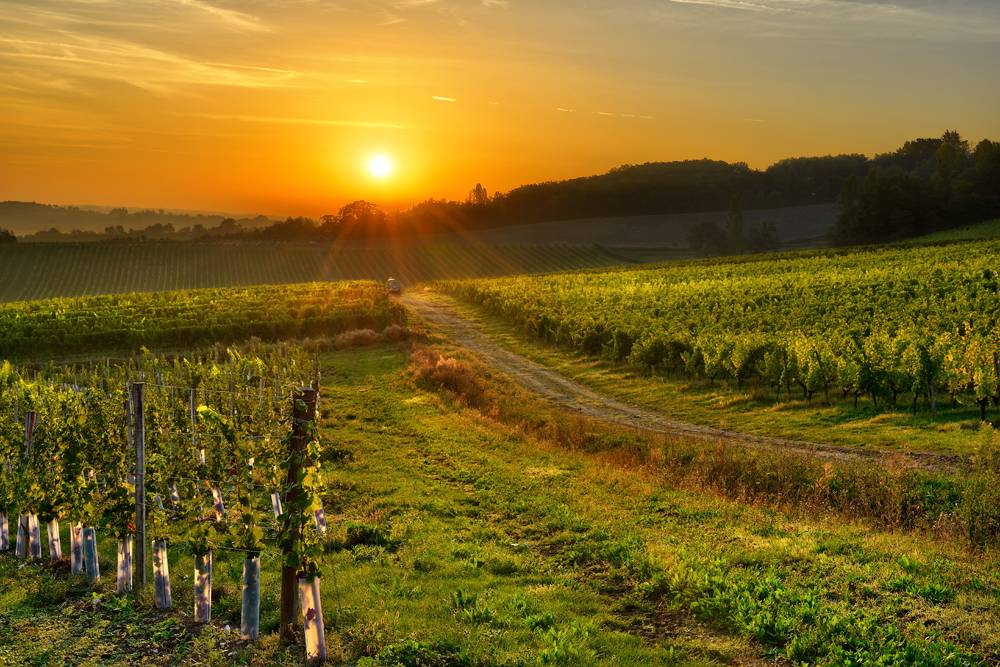 Magnificent Sunsets Bergerac,France