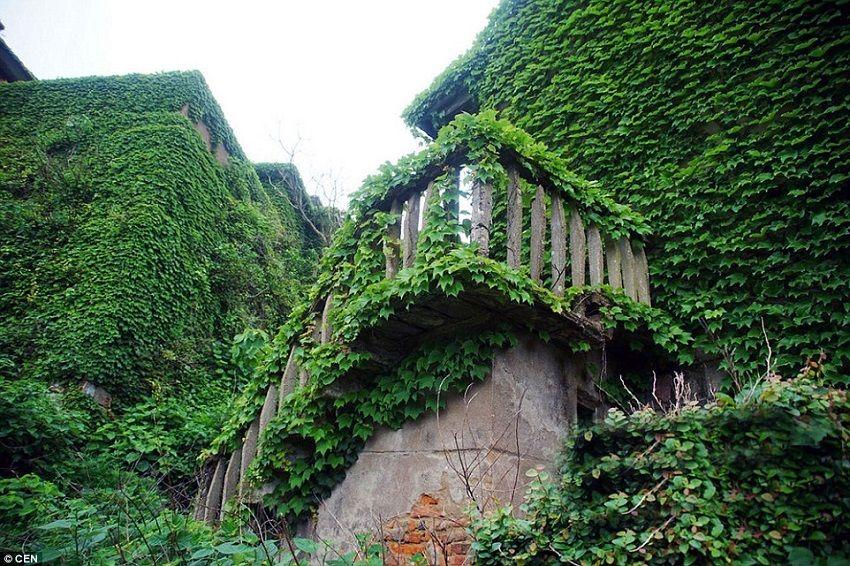 10-Shengshan Island