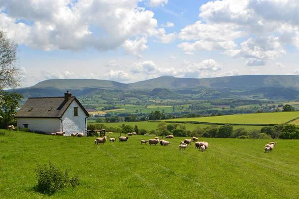 Welsh-Cottage