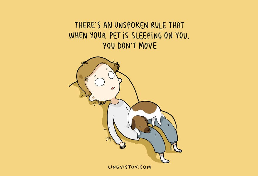 dog-owner-illustrations-8