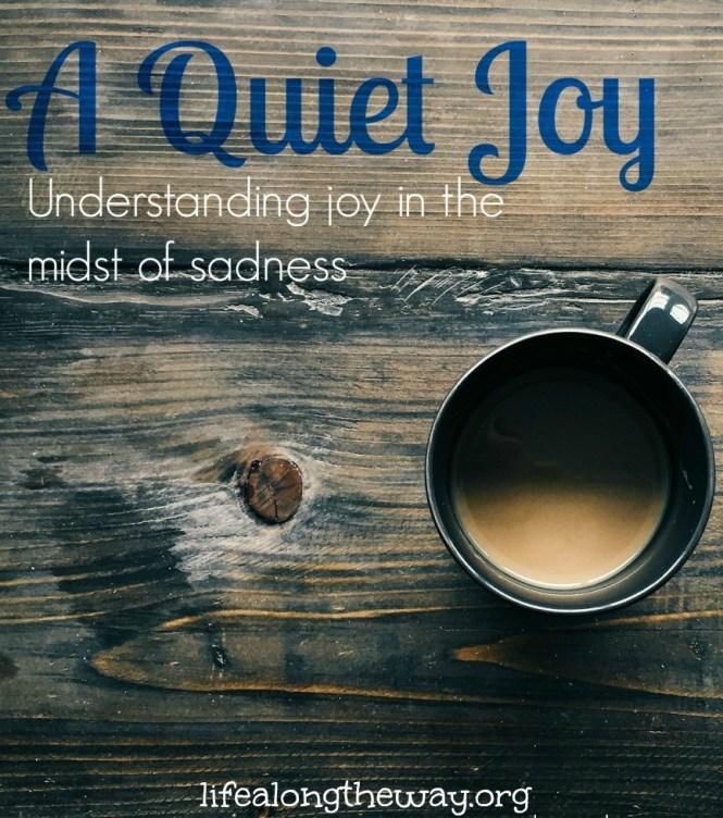 a-quiet-joy