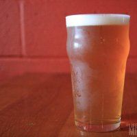 Traverse City Beer Boogie