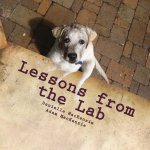 Lessons from the Lab: 26 Life Lessons You Can Learn from a Dog...A to Z