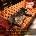 The Worst Fabrics And Finishes For A Dog Lover's Home