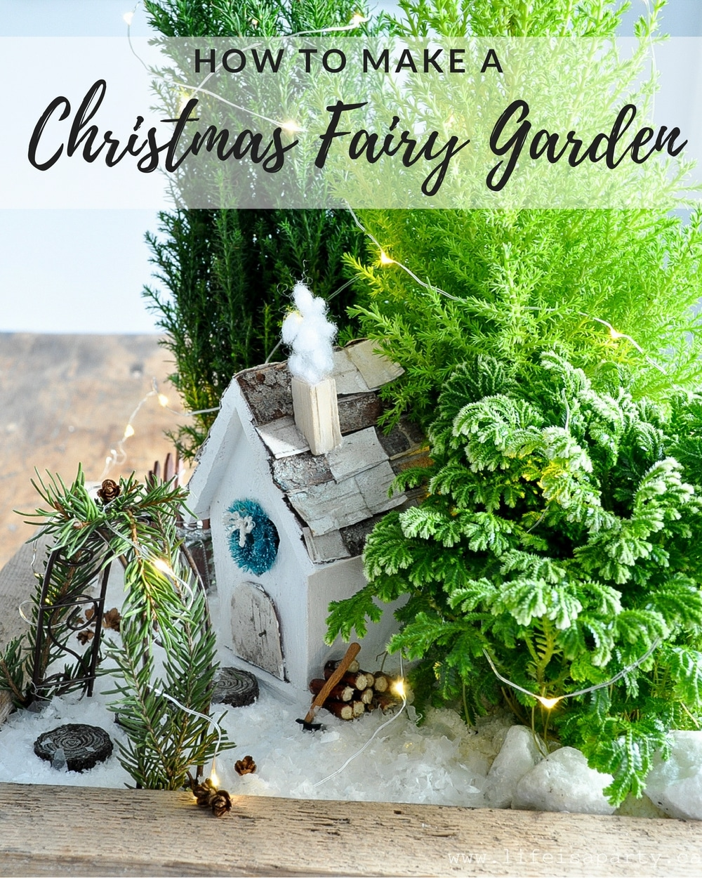 Fullsize Of Fairy Garden Christmas