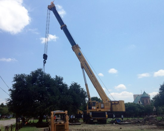 large crane relocating the tree