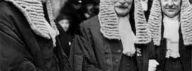 Judges in wigs