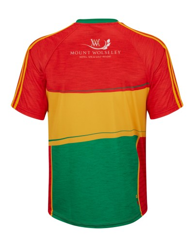 O'Neills Adult Carlow Mens Jersey 2018 | Life Style Sports