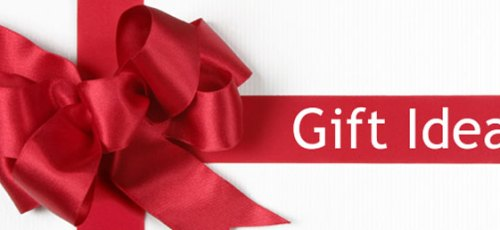 Perfect Gift Ideas For the Holidays – Our Choices