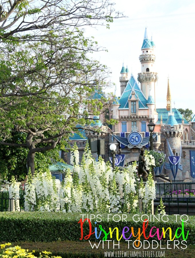 tips-for-disneyland-with-toddlers
