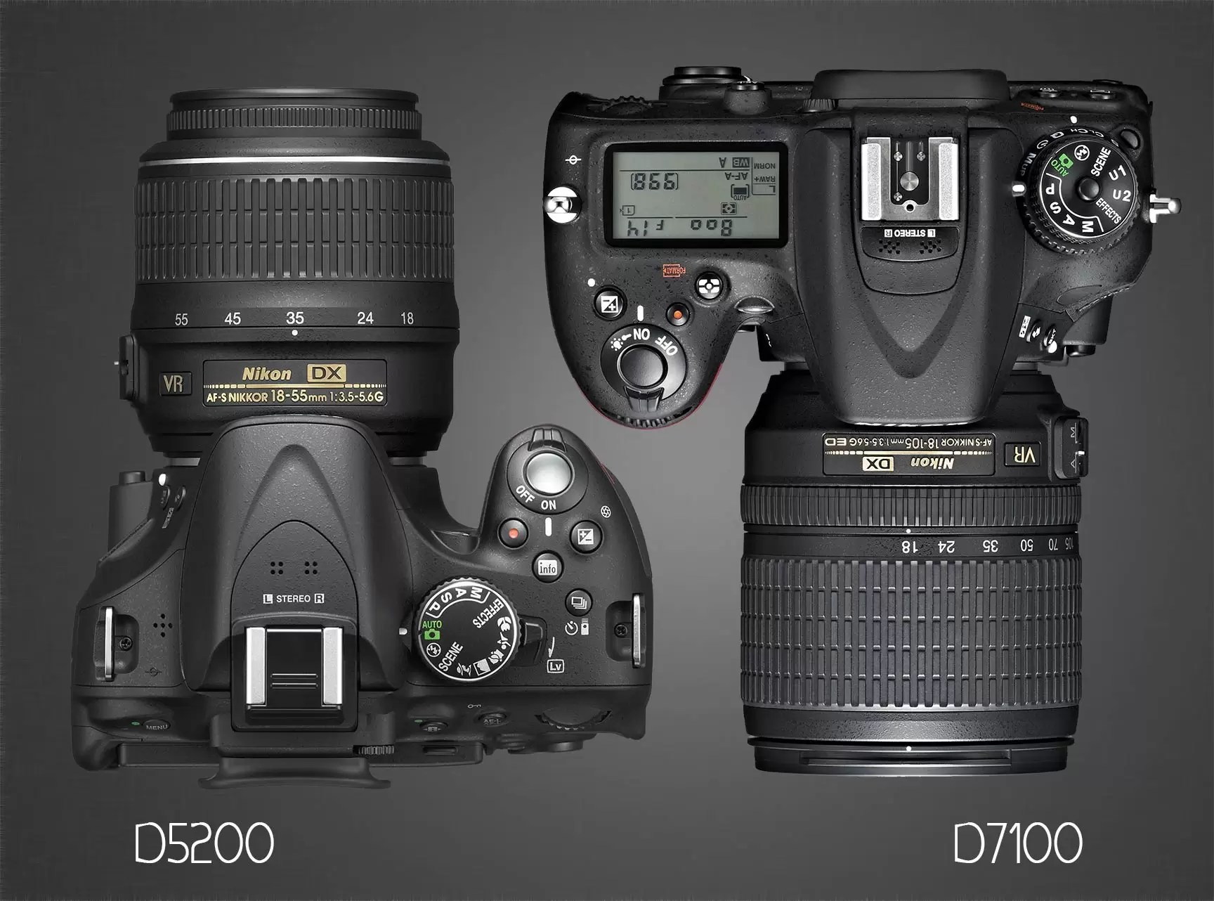 Nikon D5200 vs D7100 : Which Should You Buy?
