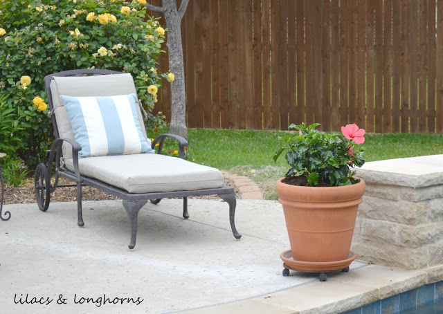 How to Plant in Large Pots {Without Spending a Fortune}