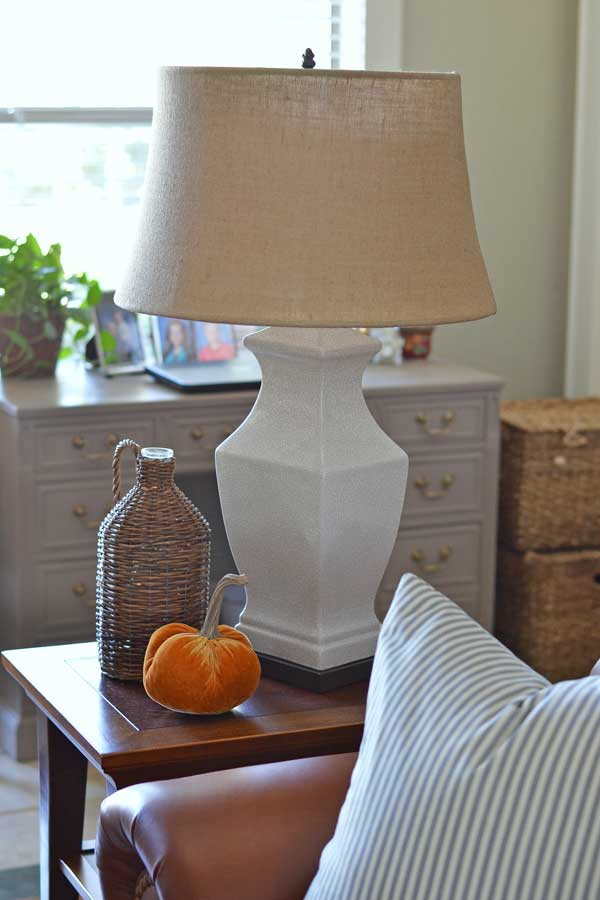 Lamp Makeover {Thrift Benefit for Sheltered Animals}
