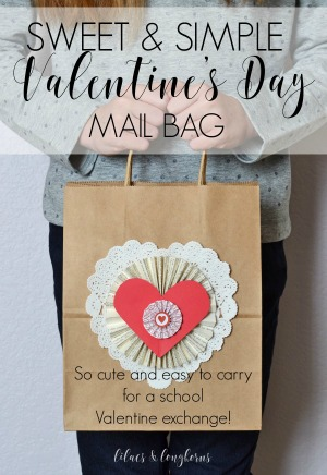 Valentine's Day mail bag craft