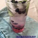 blueberry mojito_edited-1