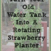 DIY:  Up-Cycled Rotating Strawberry Planter