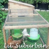 Upcycled Pallet Chicken Tractor