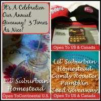 The Winners of Our Bloggiversary Giveaway!