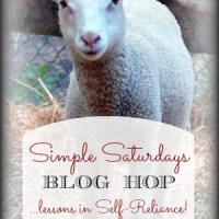 Simple Saturdays Blog Hop #54