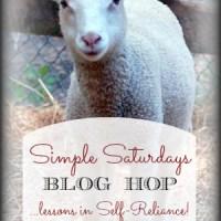 Simple Saturdays Blog Hop #54
